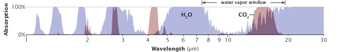 These are absorption spectra for water and carbon dioxide. The large white areas show wavelengths where water does not absorb and are  wavelengths where greenhouse gases could have a larger potential.